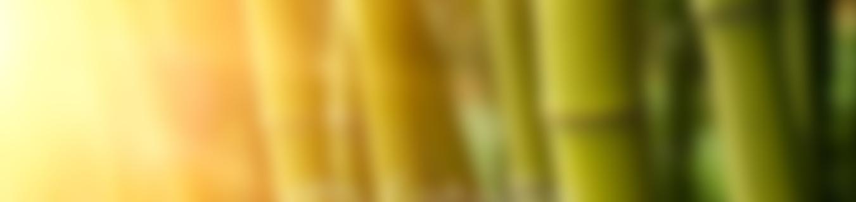 test-slider-04-difum